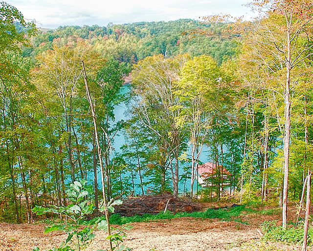 Cove Pointe Lakefront Lots for Sale on Norris Lake
